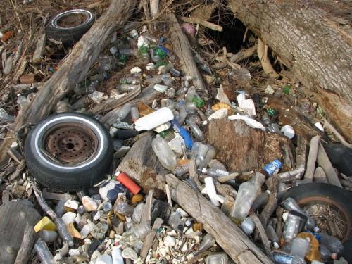 Trash midden, 3/09