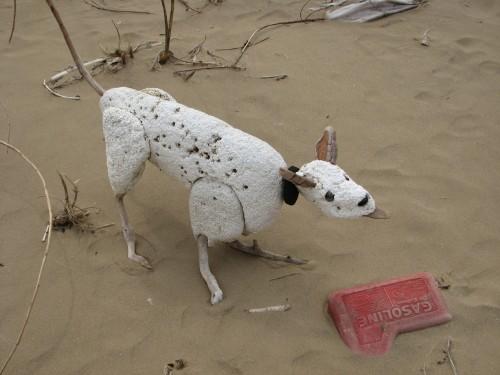 Styro hound on site, 4/09