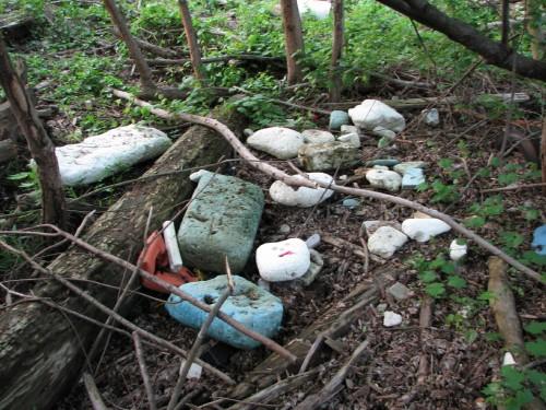 Styrofoam cache, 5/09