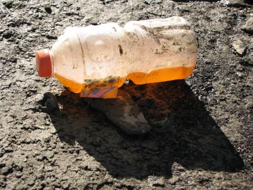 Orange-sports drink