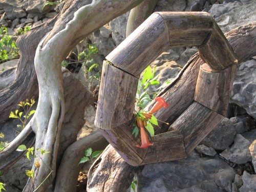 wood wreath with trumpet vine, 6/09