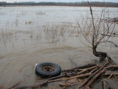 Floating tire
