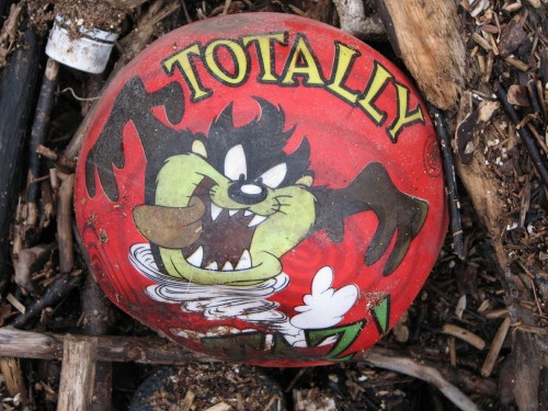 Tasmanian Devil ball
