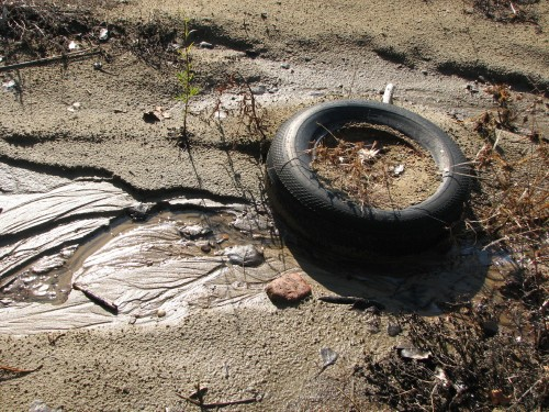Discarded tire