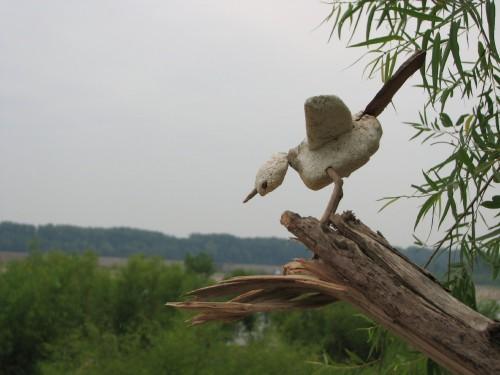 Styro Microbird, 7/09