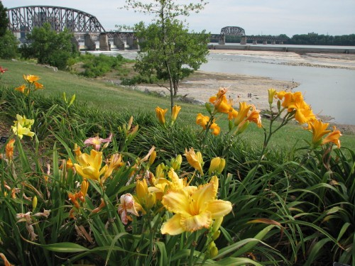 Falls view with daylilies, 7/09