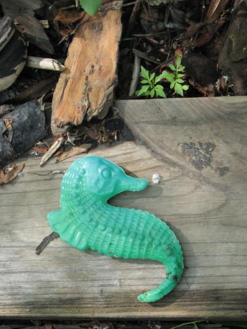 green plastic seahorse