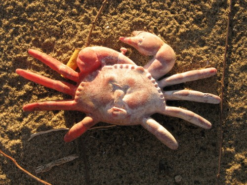 red plastic crab