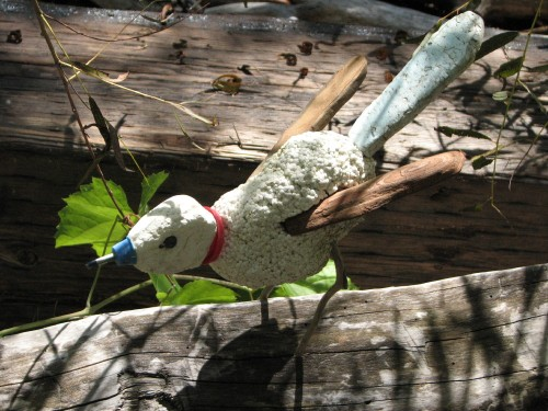 White Jay, 10/09