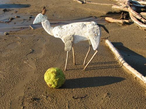 Little Deer with Osage Orange, 11/09