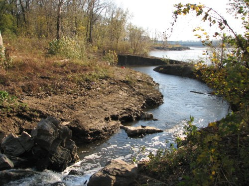 Cane Run Creek, 11/09