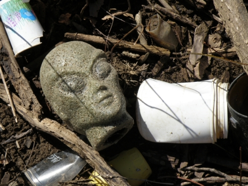 Alien head and plastic trash, Feb. 2013