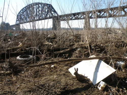 Railroad bridge with bunny, Feb. 2013