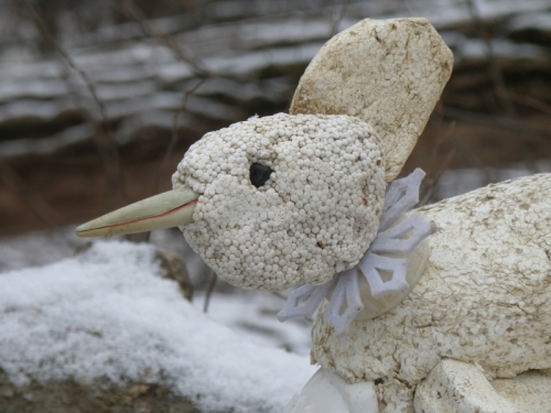 detail of Snow Cock head, Feb. 2013