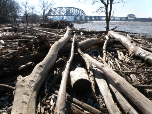 Falls of the Ohio, post high water, Feb. 2013