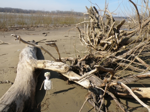 Figure with bear hat and driftwood, Feb. 2013