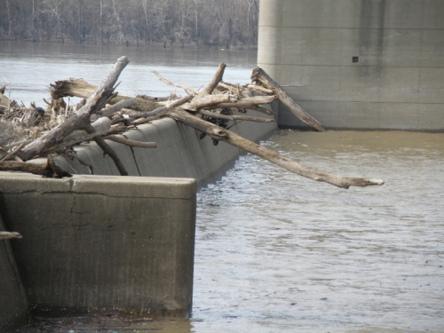 logs on the dam, March 2013
