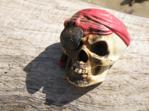 plastic pirate skull with eye-patch, March 2013