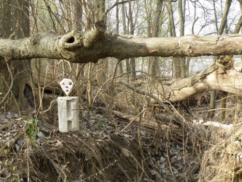 Sauger Man, under a tree trunk, Falls of the Ohio, April 2013
