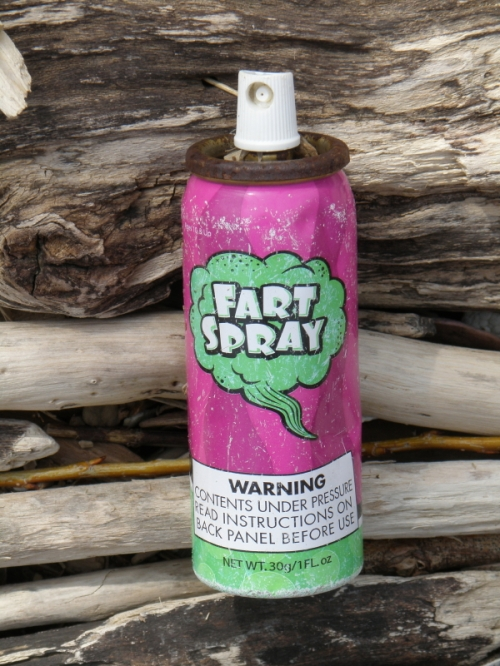 tiny aerosol can of fart spray, April 2013
