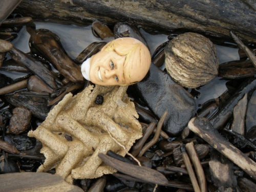 """Ken?"" doll head and walnut, May 2013"