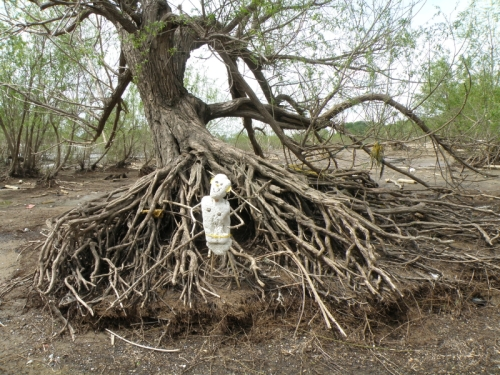 Polystyrene Person among willow roots, May 2013
