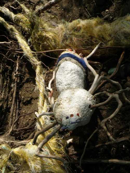 Giant Driftwood Spider in its lair, May 2013