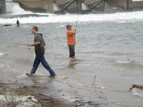 Fishermen, Falls of the Ohio, June 1, 2013