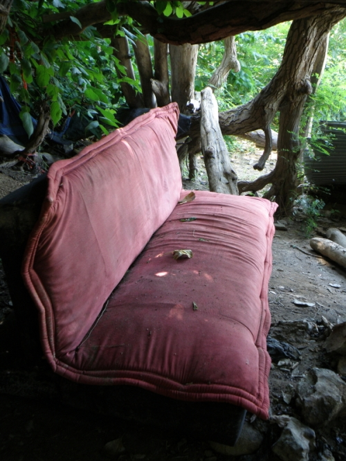red couch under the cottonwood tree, Aug. 2013