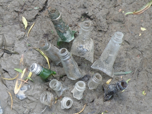 glass bottlenecks stuck in the mud, 2013