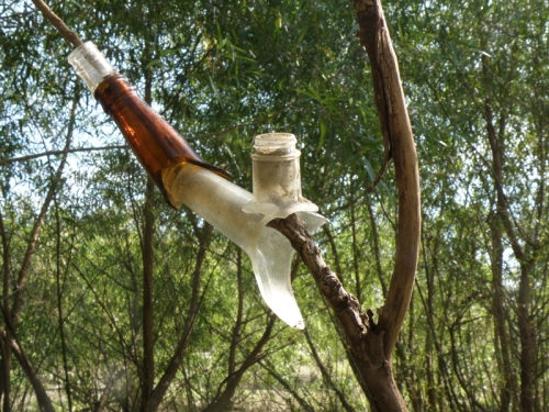 glass bottlenecks on a willow branch, 2013