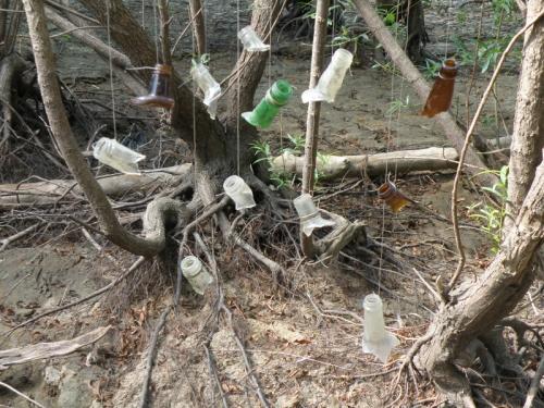 various glass bottlenecks suspended on fishing line, 2013