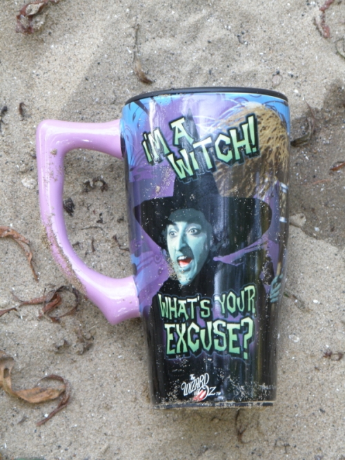 plastic witch cup, Falls of the Ohio, Oct. 2013