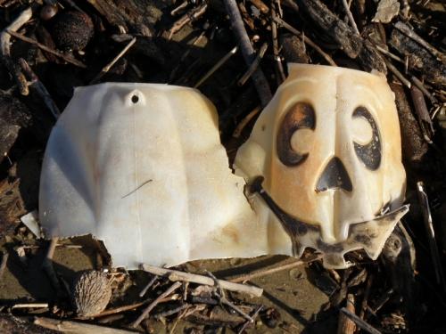 destroyed plastic jack-o-lantern, Oct. 2013