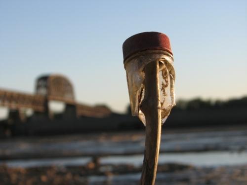 bottleneck on a stick at sundown, Falls of the Ohio, 2013