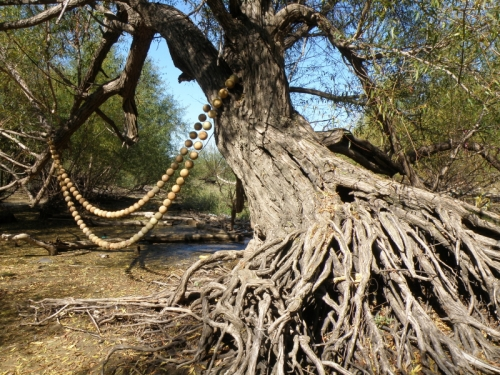 amazing willow tree wearing my river pearl necklace, October 2013
