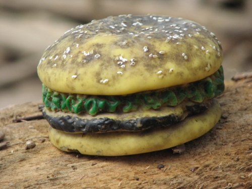 Gross cheeseburger with white poppy seeds and river patina