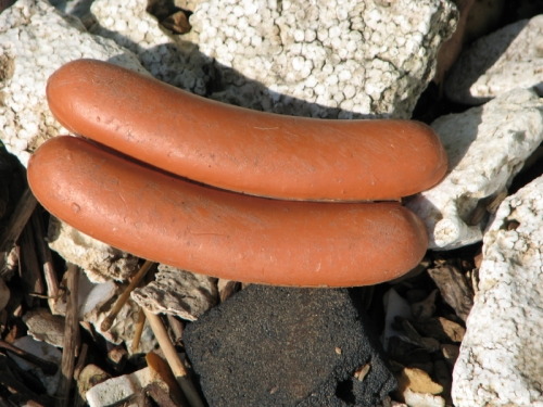 conjoined plastic hot dogs from the Falls of the Ohio
