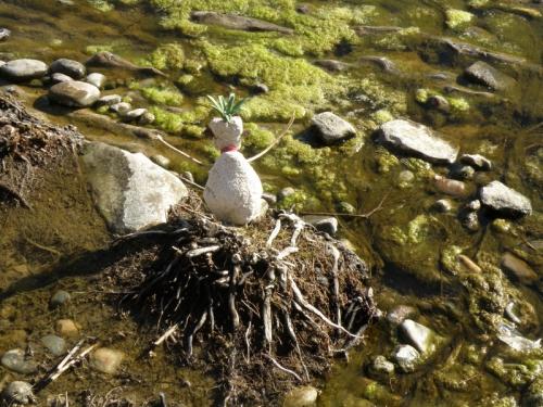 The Harbinger wills algae to life, March 2014