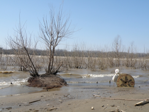 Final shot from the big spool and tiny willow island, March 2014, Falls of the Ohio