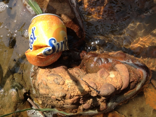 Soft drink can in the water, Aug. 2014