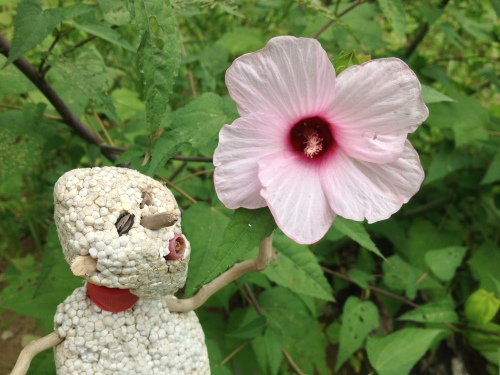 Micro Polo next to giant Rose Mallow, Falls of the Ohio, Aug. 2014