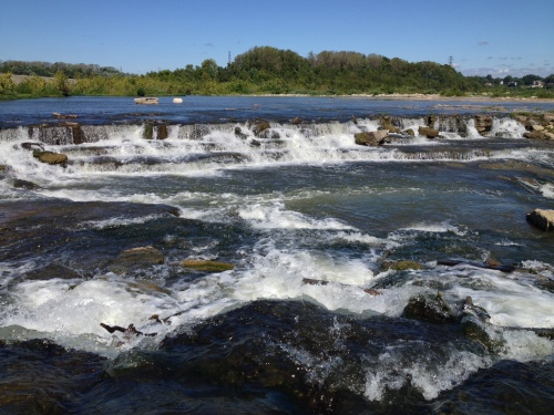 Cascades, Falls of the Ohio, Sept. 2014