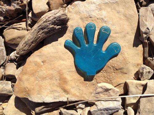 blue plastic hand on fossil rocks, Falls of the Ohio, Oct. 2014