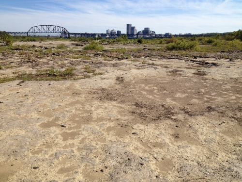 Fossil beds with the skyline of Louisville in the distance, Falls of the Ohio, Oct. 2014