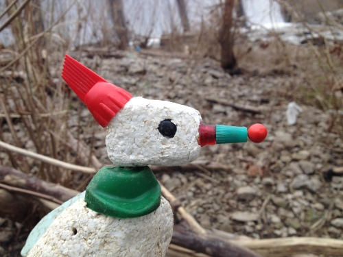 Close up of the Christmas Bird with red berry, Falls of the Ohio, Dec. 2014