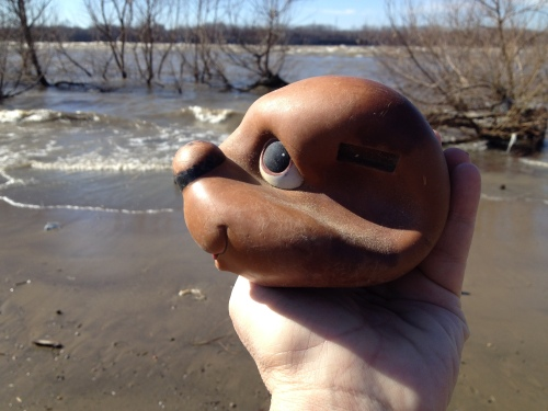 found, earless, plastic dog head, Jan. 2015