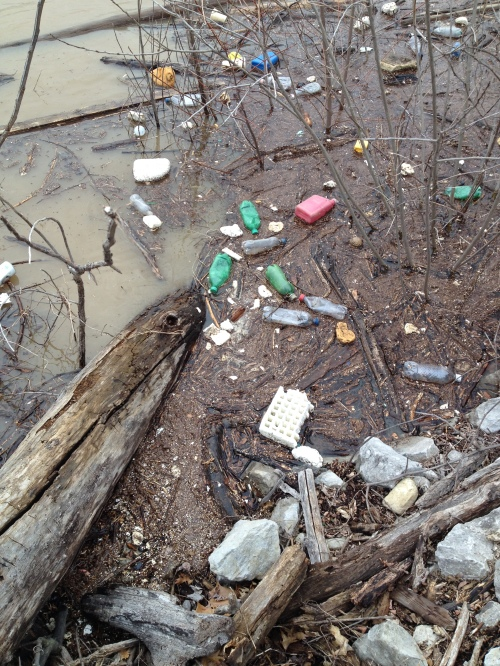 Garbage in a flooded river, Falls of the Ohio, March 9, 2015