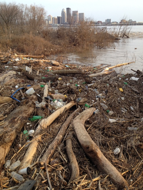 High water trash at the Falls of the Ohio, March 2015