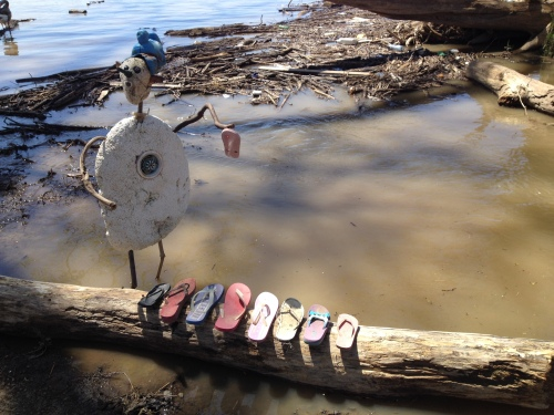 Shoe Shaman of the Big Blue Nation, Falls of the Ohio, April 2015